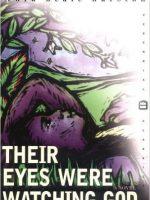 eyes-watching-god-book